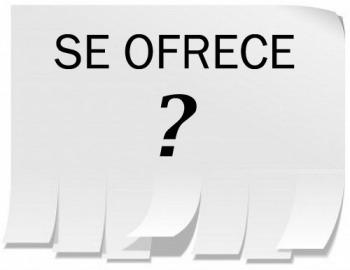 seofrece